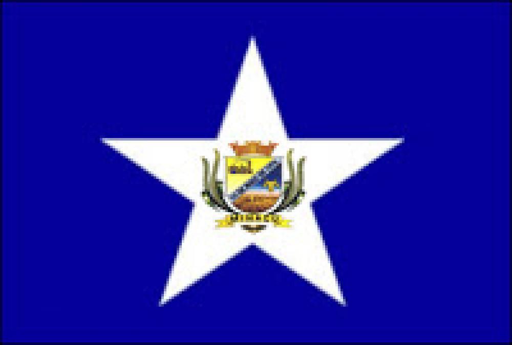 Bandeira do Município de Minaçu - Go